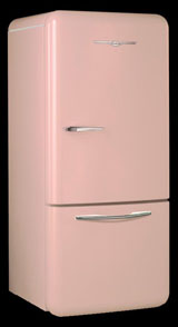 Flamingo Pink fridge